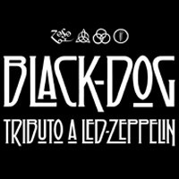 BLACK DOG (Tributo a Led Zeppelin)